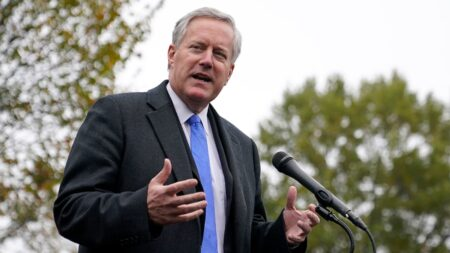 White House Head of Staff Mark Meadows Has Tested Positive For Coronavirus